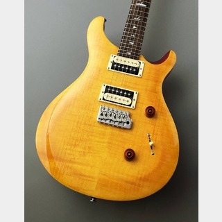 Paul Reed Smith(PRS) Paul Reed Smith SE Custom 24 Vintage Yellow ≒3.64kg #C13568
