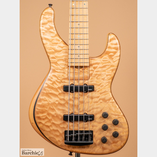 Skjold Design Guitars Lion's Pride A