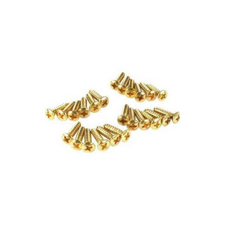 Fender PICKGUARD-CONTROL PLATE MOUNTING SCREWS (24) GOLD 0994924000