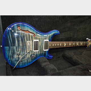 Paul Reed Smith(PRS) Custom 24 Semi Hollow 10 Top