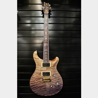 Paul Reed Smith Private Stock #2753 Custom 24 (USED) / Purple Fade