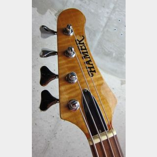 Hamer USA Cruise Bass / Natural