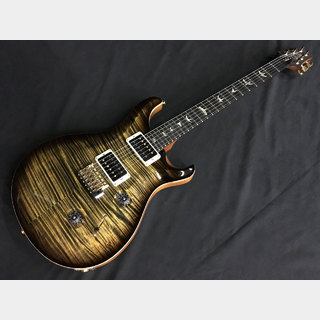 Paul Reed Smith(PRS) Artist Package Custom 24 (Custom Color) #205662