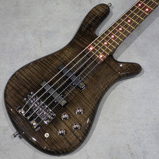 Warwick Streamer LX 5st Nirvana Black Transparent HP Red LED 【在庫限り!!決算特価!!2/28まで!!】