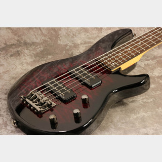 SCHECTER AD-RDN-SP-5 Black Cherry シェクター 【御茶ノ水本店】