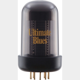 Roland BC TC-UB (Blues Cube Ultimate Blues Tone Capsule)