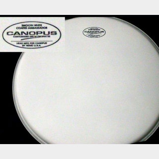 "canopus CANOPUS ヘッド POWER STROKE3 CLEAR 20"" BD"