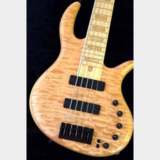 Elrick Gold Series e-volution 5st Quilted Maple/Swamp Ash,Birdseye Maple 【NEW】※軽量個体 !