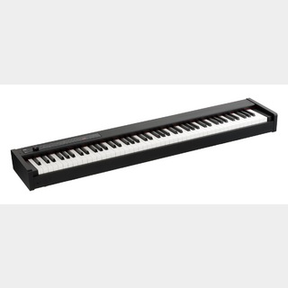 KORGDIGITAL PIANO D1 【限定特価】