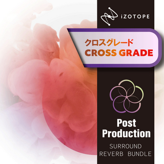 iZotopePost Production Surround Reverb Bundle CG版 from any Stereo Reverb [メール納品 代引き不可]