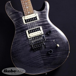 "Paul Reed Smith(PRS) SE ""Floyd"" Custom 24 (Gray Black)"