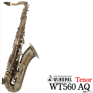 NO BRAND WT560 ANTIQUE 【ウインドパル】【60ヵ月保証】