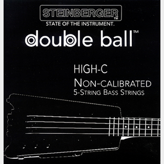 SteinbergerSST-110 5-String Bass Strings (High C : 029-105)