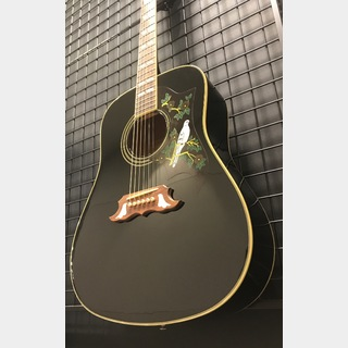 Epiphone Limited Edition DOVE Ebony Black USED