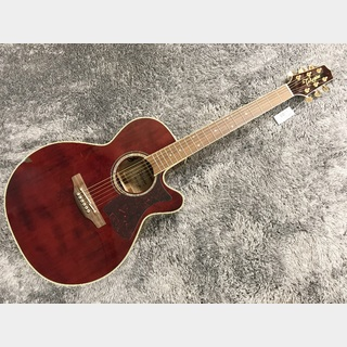 Takamine DMP551C WR w/Contact Type Pickup 【展示入替特価】【日本製】【エレアコ】