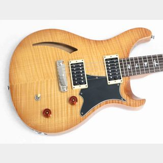 Paul Reed Smith(PRS) SE CUSTOM 22 SEMI-HOLLOW