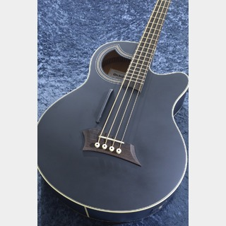 WarwickRock Bass Alien Standard 4 -Solid Black Satin-【NEW】