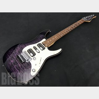 SCHECTER SD-DX-24-AS/R (PRSB)