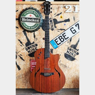 Taylor T5  Limited  Rosewood Top【御茶の水店】