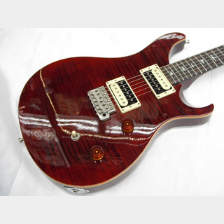 Paul Reed Smith(PRS) SE CUSTOM24