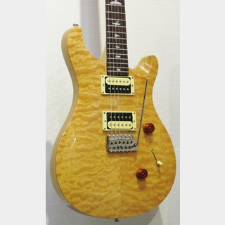Paul Reed Smith(PRS) 【冬のセール!!】SE Custom24 -Natural-【2010's USED】【杢目良好個体】
