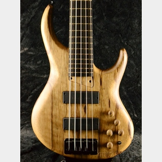 MTD 535-24 - Black Limba Top/Wenge Neck -