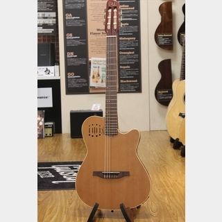 Godin Multiac Nylon Encore / Natural