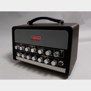 Positive Grid BIAS Head 600W AMPMATCH AMPLIFIER