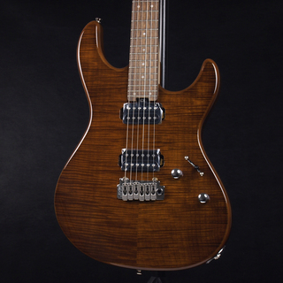 FERNANDES NTG-LTD WN / Walnut