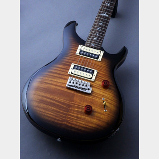 Paul Reed Smith(PRS) Paul Reed Smith SE Custom 24 N BG #B32428 【重量:約3.43Kg】【ブラックゴールド】【良杢個体】