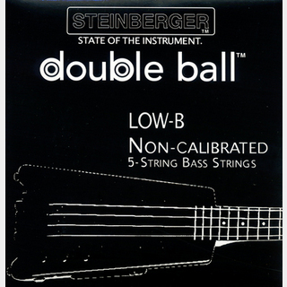 SteinbergerSST-111 5-String Bass Strings (Low B : 045-128) 【ベース弦】
