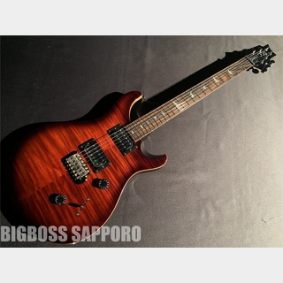Paul Reed Smith(PRS) SE Custom 24 (Fire Red Burst)