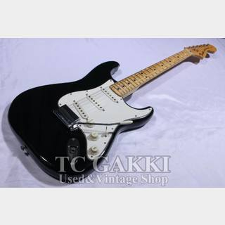 Fender 1976 STRATOCASTER Ash / Maple