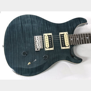 Paul Reed Smith(PRS) SE Custom24 (Gray Black) ≒3.45kg