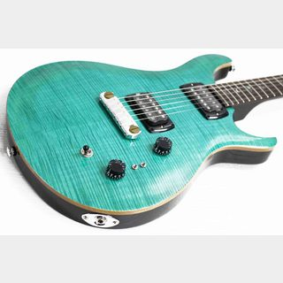 Paul Reed Smith(PRS) SE Paul's Guitar Aqua (AQ)