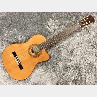 ARIA A-35CE 【エレガット】