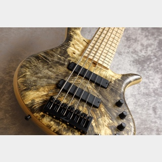 ElrickGold Series e-volution 6 Bolt-on 34inch/Bird's eye Maple【動画あり】【NEW】
