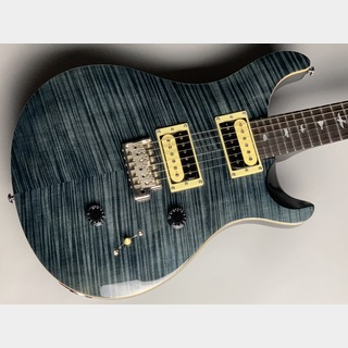 Paul Reed Smith(PRS) 【良木目個体!】SE Custom 24 N (GB)