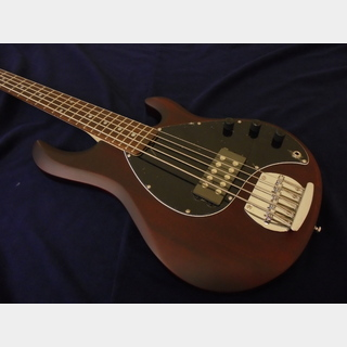 Sterling by MUSIC MAN RAY5 Walnut Satin