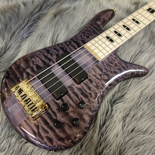 Spector EURO 5 LX Premium Wood Ultra Violet Gloss/MPFB【New Color】