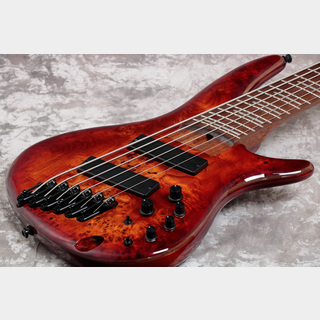 IbanezSRMS806 Bass Workshop Brown Topaz Burst (BTT) 【御茶ノ水本店】