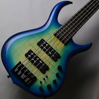 Sire M7 5st Alder+Maple/Transparent Blue