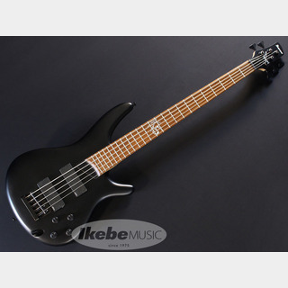 "Ibanez K5-BKF[""KORN"" Fieldy Signature Model]"