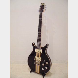Washburn Wing Series Falcon Rosewood(Used)