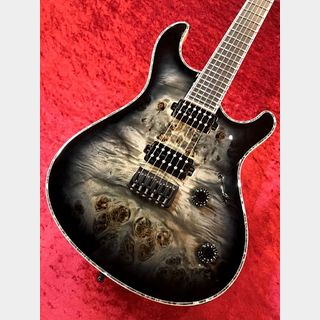 "MAYONES Regius 6 ""Eye Poplar Top,Bare Knuckle Aftermath Pickup"" 【ローン48回無金利&超低金利】"