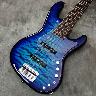 "FREEDOM CUSTOM GUITAR RESEARCH Rhino 5st ""Premium Grade Quilt Maple Top"" ユグドラシル(YGD)【新宿店】"