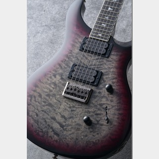 Paul Reed Smith(PRS) Paul Reed Smith SE MARK HOLCOMB N-HB  #S13422【3.31kg】
