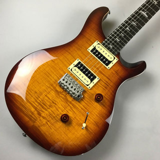Paul Reed Smith(PRS) SE Custom 24