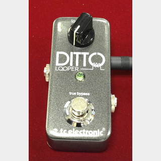 tc electronic Ditto Looper 【正規輸入品】
