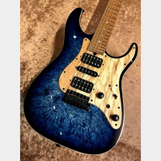 T's Guitars DST-Pro24 'Burl Maple Top' 【Custom Order Model】【動画アリ♪】